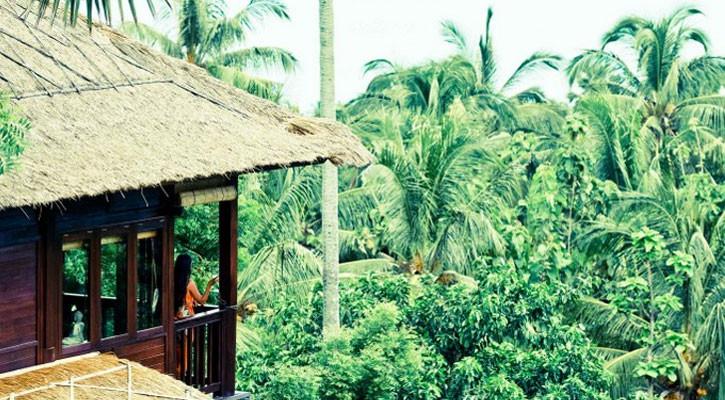 coconut-house3