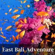 bali-adventure